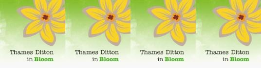 Can you help Thames Ditton bloom?